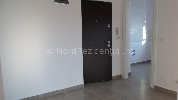 apartament 2 camere de vanzare bucurestii noi (28)